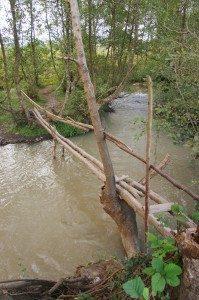 Spång över flod