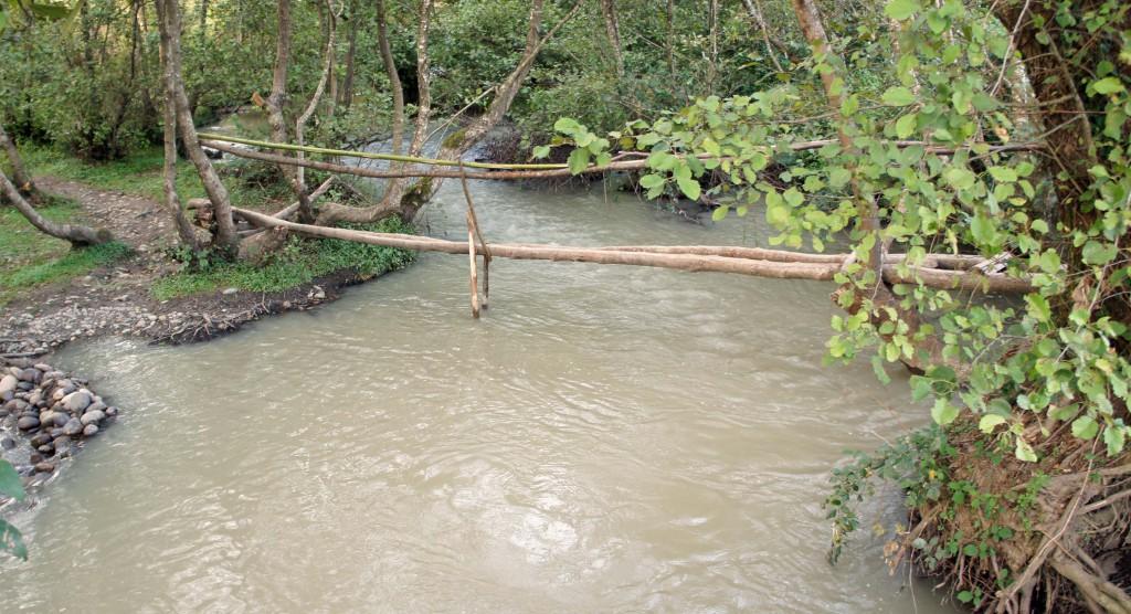 Spång över vattendrag